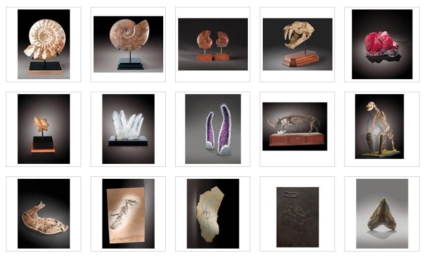 įvairios fosilijos ir mineralai parduoti Sotheby 2010